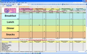 Pregnancy Diet Journal - Excel Templates