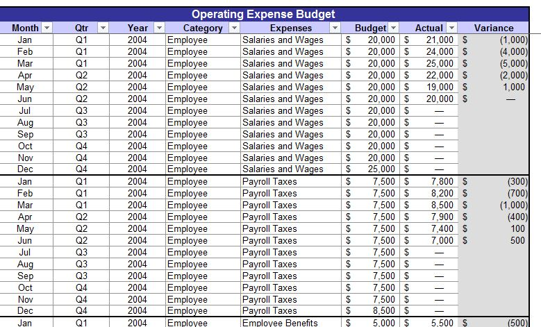 Screenshot of the Expense Budget Template