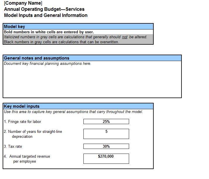 screenshot of the annual operating budget template
