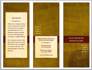 Tri Fold Brochure Template photo