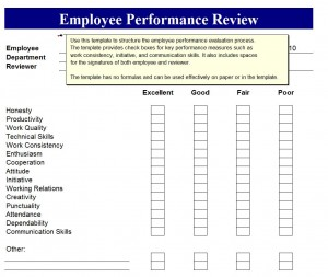 Employee Performance Review Form