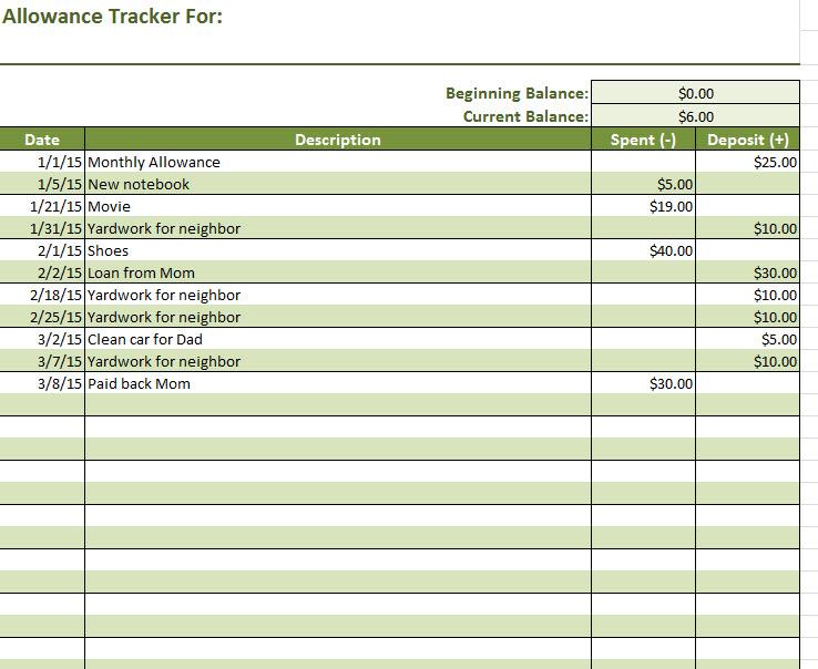 allowance ledger workbook