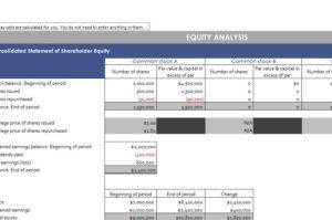Shareholder Equity Report