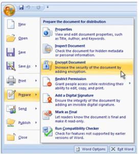 Password Protecting Excel